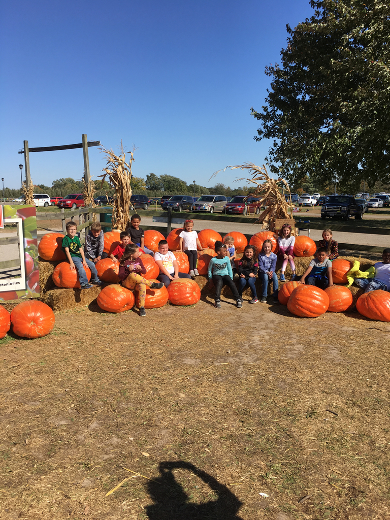 Third grade pumpkin picking!